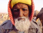 View the image: Camel trader II, Pushkar, 1994