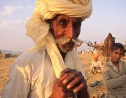 View the image: Camel trader I, Pushkar, 1994