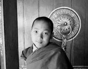 View the image: Rumtek monastery I, 1997