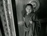 View the image: Rumtek monastery II, 1997